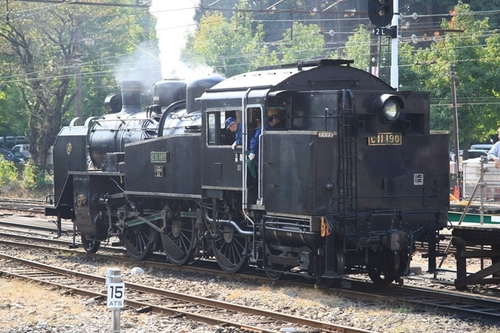 351F1975.JPG