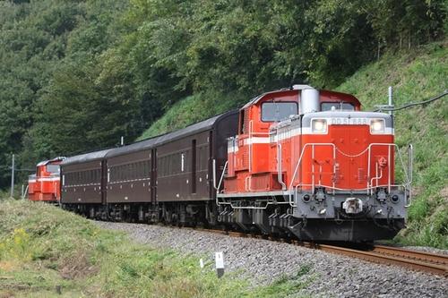 351F3350.JPG